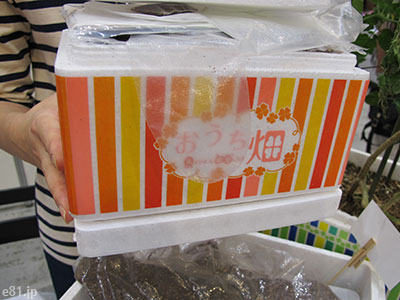 「おうち畑」Sサイズの箱