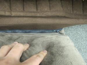 「ふわふわコーナークッションセット」の、敷物とクッションをつなげるファスナー