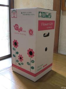 イイハナ・ドットコムの『母の日 鉢植え「カーネーション メモワール」』のパッケージ