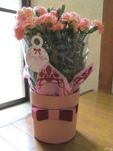 イイハナ・ドットコムの『母の日 鉢植え「カーネーション メモワール」』。パッケージから出したばかりの鉢植え。