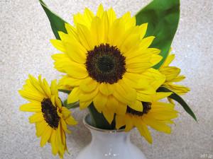 『父の日 ひまわり花束セット「浅草むぎとろ 茶そば」』のヒマワリをアップで撮影
