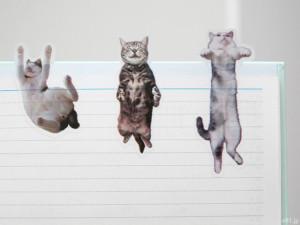 フェリシモ「そこにいたの!? ノートで遊ぶ 猫ふせんの会」では、2,000点以上の中から選び抜かれた猫の写真が使われています。