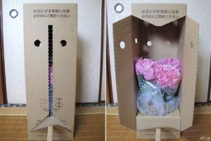 hibiyakadan.comの花鉢『母の日 アジサイ「ペガサス」』(梱包のダンボールを開けているところ)